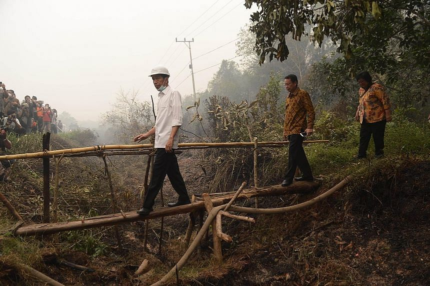 (From left) Indonesian President Joko Widodo, National Disaster Management Agency chief Willem Rampangilei and Environment and Forestry Minister Siti Nurbaya Bakar inspecting a firefighting operation in Kapuas district in Central Kalimantan province