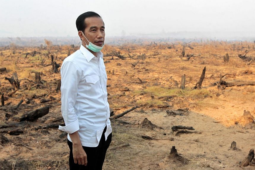 Indonesian President, Joko Widodo, inspects the work of emergency services tackling forest fires in the village of Guntung Damar, South Borneo, Indonesia, on Sept 23, 2015.