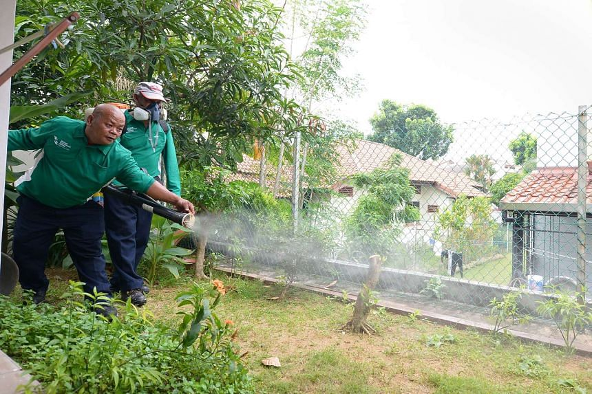 NEA workers spray insecticide to kill the larvae of the Aedes mosquito on a private property.