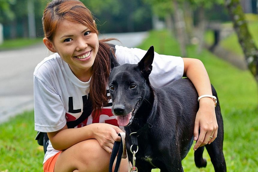 Volunteer Lee Jie Ying, 27, with Tux, which took three years to find a home because of its colour and timid character, which was improved after months of rehabilitation.