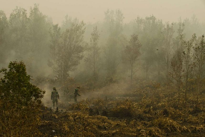 Indonesian military troops extinguishing a fire at a vast burning peat land forest in the Jabiren Raya district of Central Kalimantan province on Borneo on Sept 24, 2015.