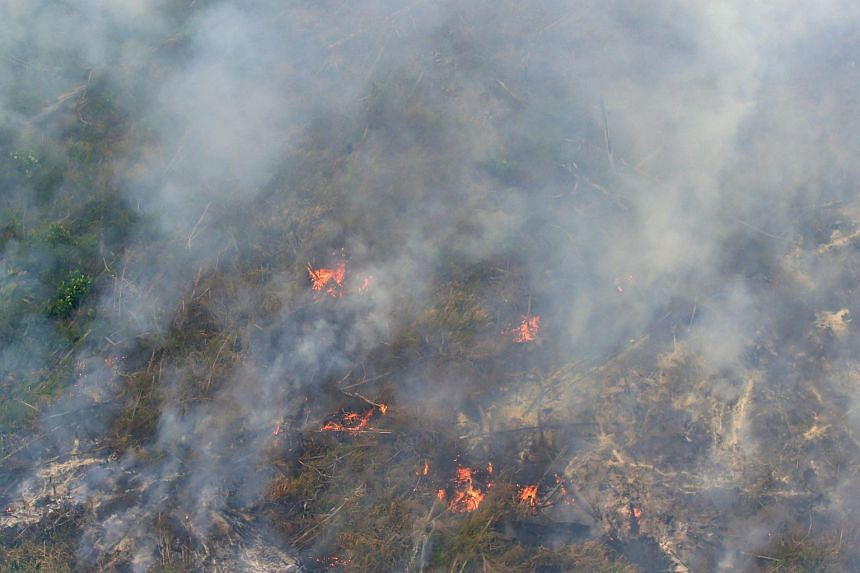 This picture taken from a Kamov helicopter operated by Indonesia's Disaster Mitigation Agency shows fires burning at a concession area in Pelalawan, Riau province on Sept 17, 2015.