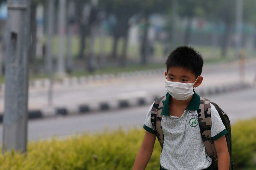 A pupil returning home from school at Pasir Ris Drive 6 at 3.30pm on Monday.