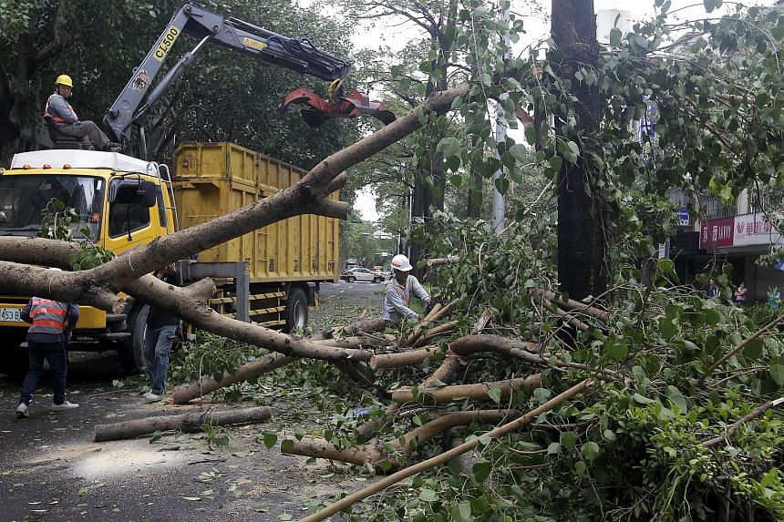 Workers removing trees uprooted by strong winds from Typhoon Dujuan, in Taipei, Taiwan, on Sept 29, 2015.