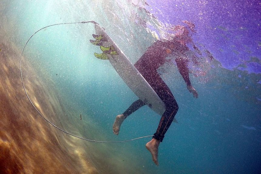 A surfer astride his board, which has an electronic shark repellent device installed, at Sydney's Bondi Beach last month. At least 13 attacks have occurred in New South Wales this year, compared with just three last year.