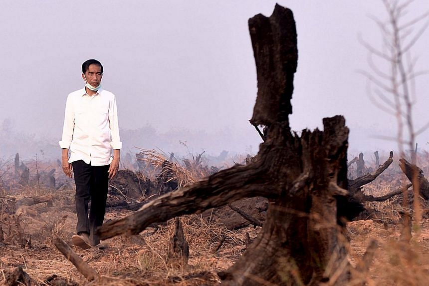 Indonesian President Joko Widodo inspecting the aftermath of a recent forest fire during a visit in Banjarbaru, south Kalimantan province, Indonesia on Sept 23, 2015.