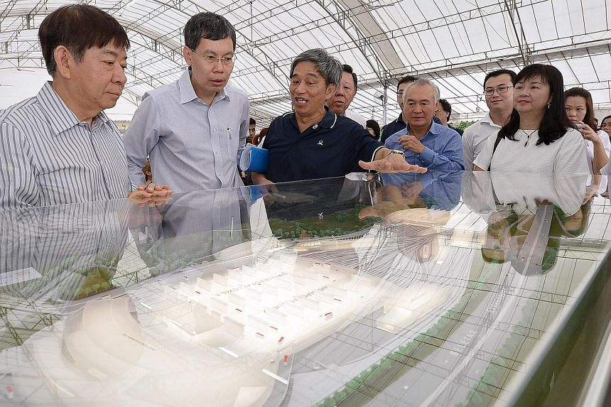 (From left) National Development Minister Khaw Boon Wan, Transport Minister Lui Tuck Yew and LTA senior group director Sim Wee Meng viewing a model of an MRT depot last year. Giving an example of how coordinating ministers may improve how policies ar