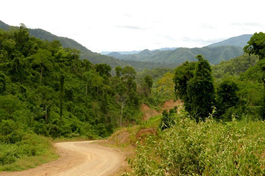 Dawei-Phu Nam Ron road : The future highway to Bangkok slices through mainland South East Asia's last major wilderness.
