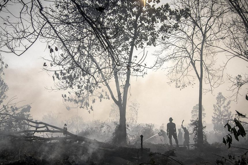 Indonesian officers spraying water on a peatland fire in Kampar, Riau province. Drained peatlands subside as they dry out, creating huge areas ripe for fires. Eventually, the land becomes vulnerable to flooding.