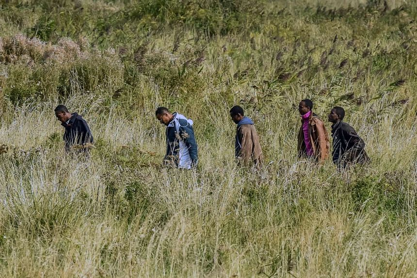 Migrants make their way through tall grass across a field towards the Eurotunnel, close to the French port of Calais.
