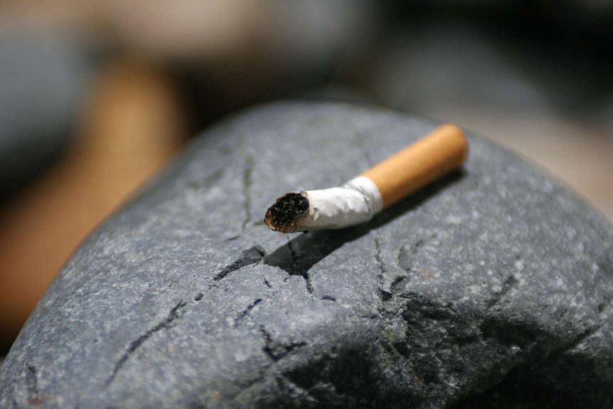 """According to a 2012 World Health Organization report about 25 per cent of France's population are smokers. The city recognises that cigarette butts strewn on the street, as well as other acts of """"incivility"""" like leaving your dog's poo on the pavemen"""