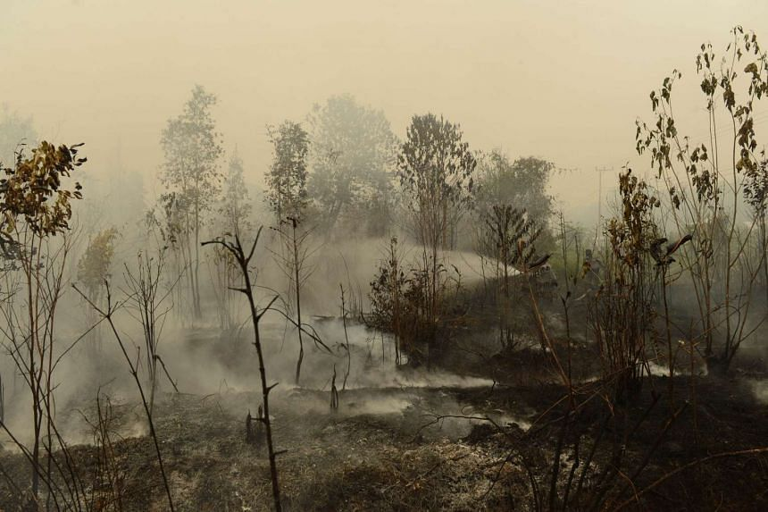 Indonesian police and firefighters extinguishing a fire on burning peat land in Kapuas, Central Kalimantan, on Sept 24, 2015.