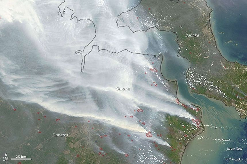 An image taken from Nasa's Terra satellite on Sept 24, 2015, shows smoke from fires in Indonesia over the coasts of Borneo and Sumatra.