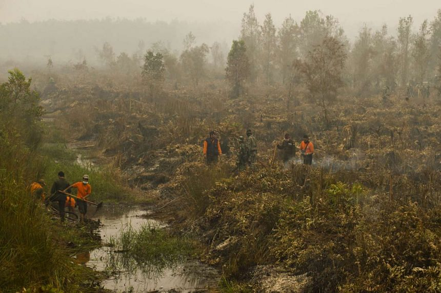 Indonesian military troops and firefighters trying to put out fire on a vast burning peat land forest in Jabiren Raya district in Central Kalimantan province on Borneo island. This photograph was taken on Sept 24, 2015.