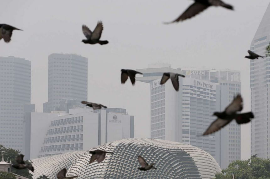 Widespread rain overnight has improved the haze conditions in Singapore, although air quality may deteriorate if denser haze is blown in, says the National Environment Agency.