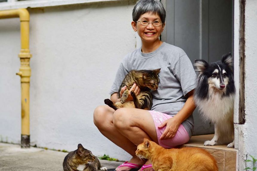Long-time CWS caregiver Doris Gwee, who is in her late 50s, with some of the animals she has rescued over the years. PHOTO: PHOTONX LLP