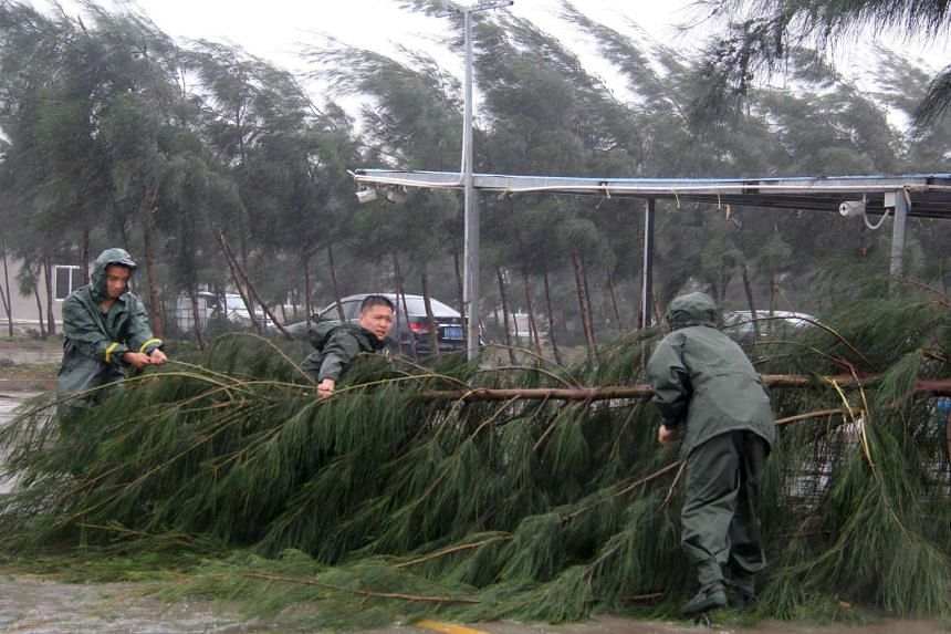 People try to remove a fallen tree from a street as Typhoon Mujigae hits Maoming, Guangdong province, on Oct 4, 2015.