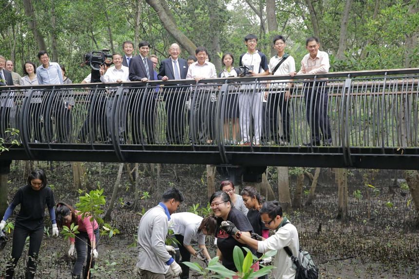 Minister Khaw Boon Wan touring the newly opened Mangrove Broadwalk at Sungei Buloh Nature Reserve.