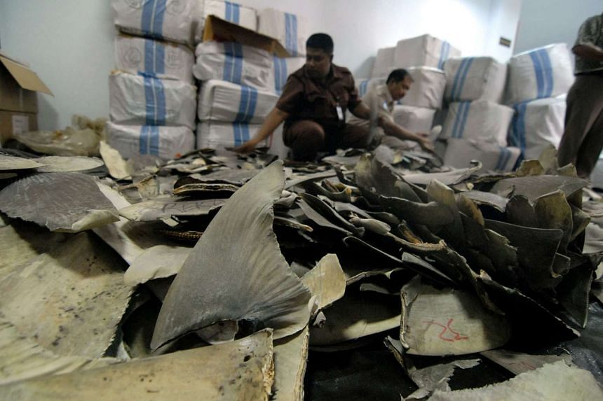 The Indonesian authorities have seized about 3,000 shark fins that were about to be flown to Hong Kong, a rare success in the battle against the illegal trade.
