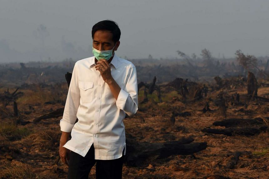 Indonesia's President Joko Widodo inspects a peatland clearing that was engulfed by fire during an inspection of a firefighting operation to control agricultural and forest fires in Banjar Baru in Southern Kalimantan province on Borneo island on Sept