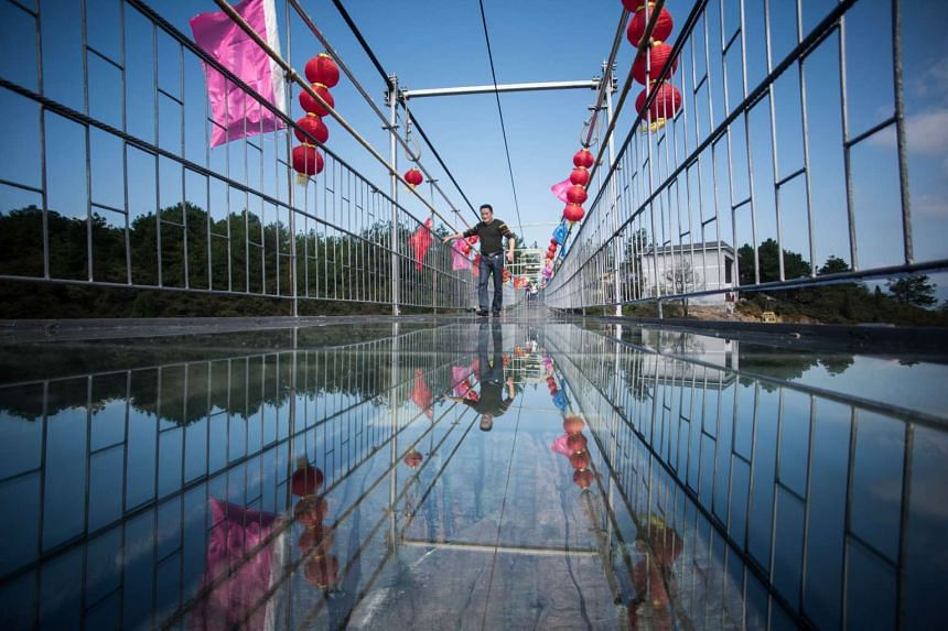 A Chinese tourist walks across the 300m long glass-bottomed suspension bridge.