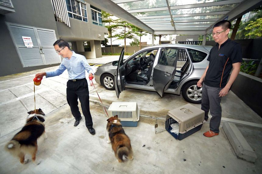 Mr Adrian Goh (far left), receiving his two dogs from PetMate driver Sydney Fong Kah Woh, who had brought the dogs home after they had been groomed at Petitudo. PetMate's drivers are screened to ensure they have experience with pets and are put throu