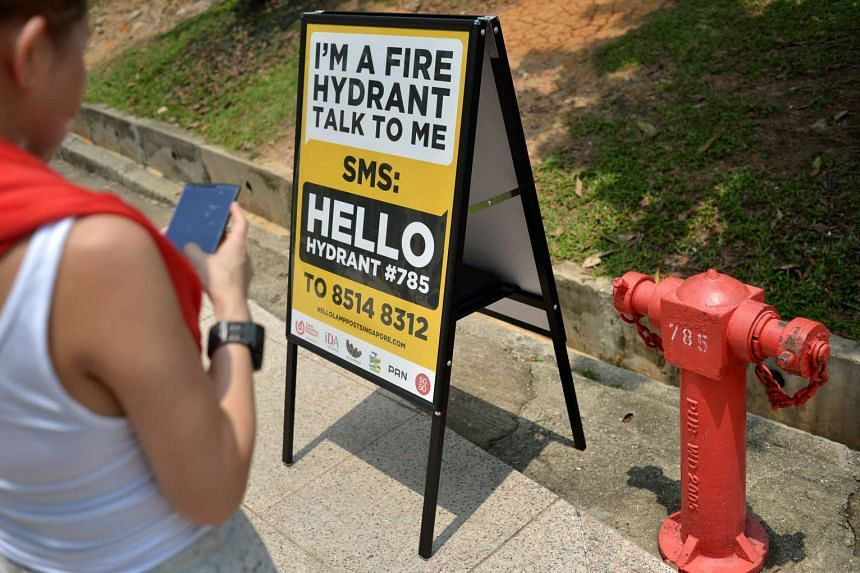 A lady SMSes the number on the signboard beside the fire hydrant.