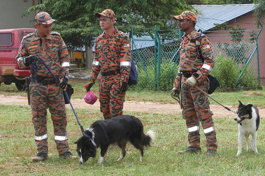 A K9 rescue unit (above) searching in the Tohoi forest reserve. The two girls who were found yesterday were given medical attention before being taken to hospital (right).