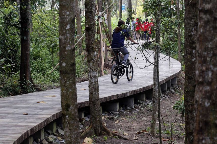 NParks, which manages Coney Island Park, has worked to preserve the island's original lush vegetation (left). The park features a beach that stretches 2km and a 2.4km-long path (right) that is part of the park connector network, which cyclists can us