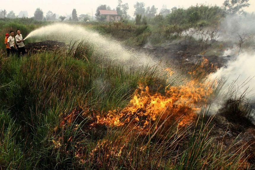 Malaysian and Chinese companies are suspected to have caused Indonesian forest fires that have spread haze pollution across South-east Asia.