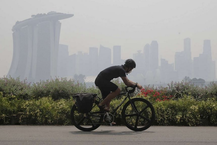 A mask-wearing cyclist riding along Gardens by the Bay East at 2.30pm on Oct 13, 2015.