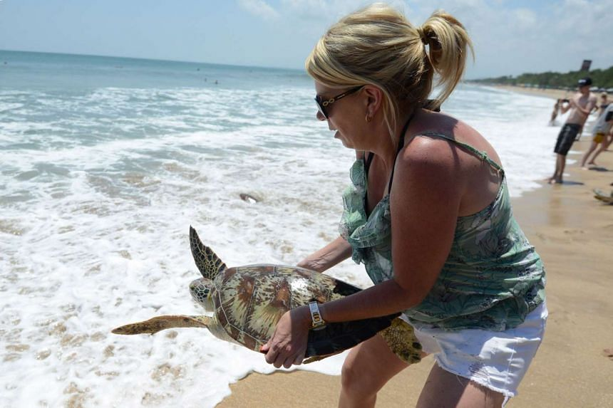 A tourist releases a turtle into the sea at a Bali beach last month. Indonesia will go all out to triple its tourist numbers in the next few years to boost a flagging economy.