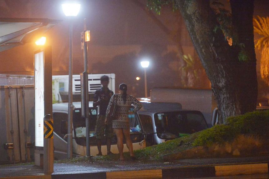 Over the last decade, Woodlands Town Garden has developed a seedy reputation. At night, transvestite prostitutes solicit for business at its carpark - always full with vans and lorries parked overnight, and at a bus stop next to it (above). The sex t