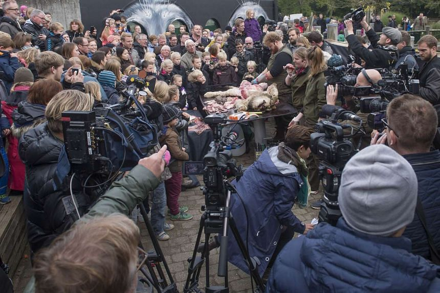 Visitors look on as zoo employees work on the dissection of a lion at the zoo in Odense, Denmark on Oct 15, 2015.