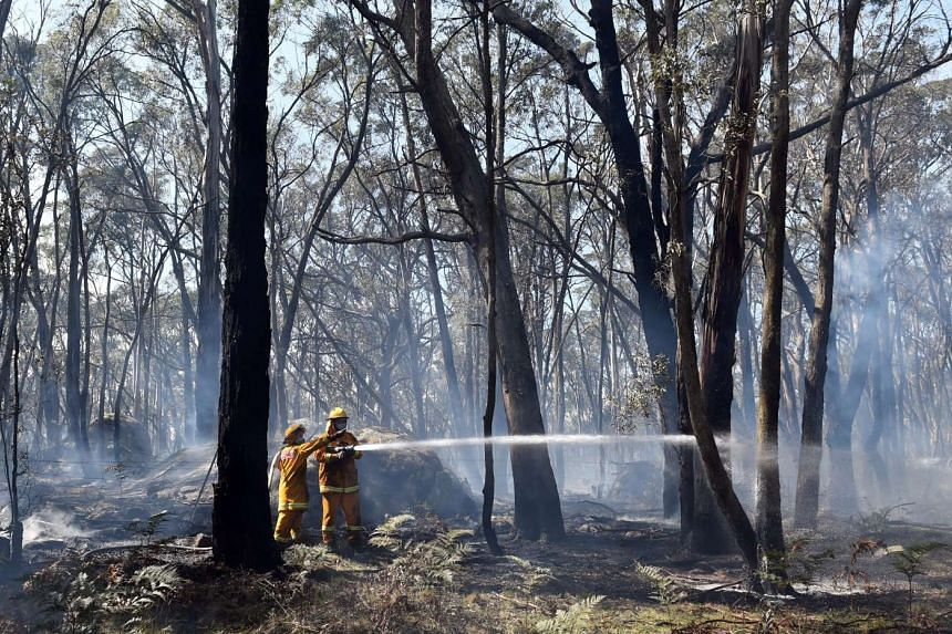 Firefighters trying to extinguish a bushfire north of Melbourne on Oct 7.