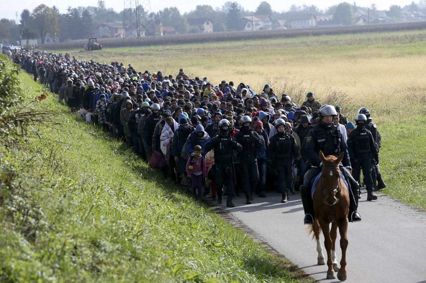 A mounted policeman leads a group of migrants near Dobova, Slovenia Oct 20, 2015.