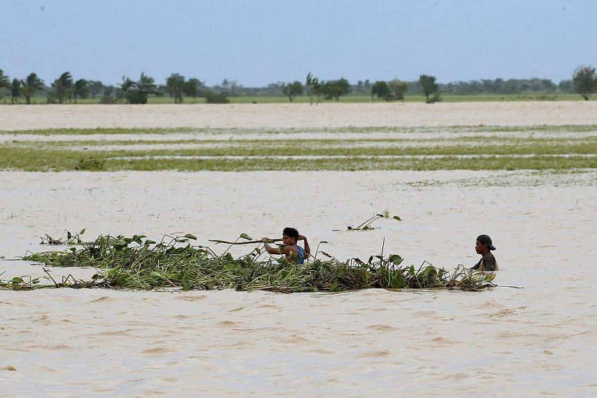 Farmers trying to remove water lilies swept by Typhoon Koppu on a flooded rice field in Santa Rosa on Oct 19.