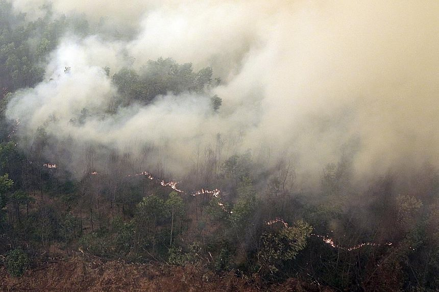 Fires raging in a forest in Ogan Komering Ilir Regency, in South Sumatra province, yesterday. New hot spots have emerged in Papua and Sulawesi, which were not known to be fire-prone until now.