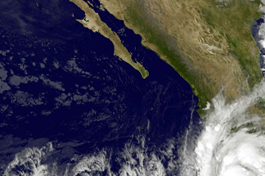 Tropical storm Patricia off the Pacific coast of Mexico has been upgraded to a hurricane, US forecasters said Thursday.