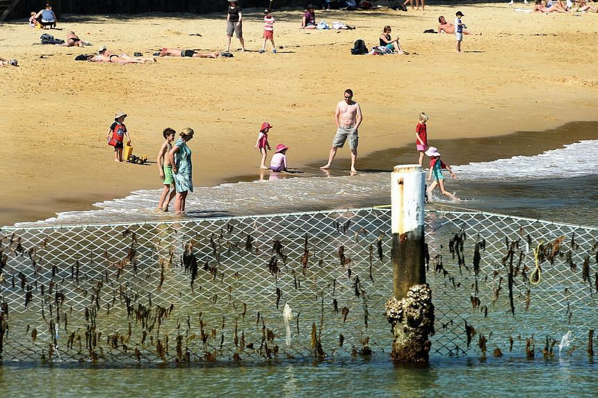 Children play on a beach behind a shark net at Manly Cove.