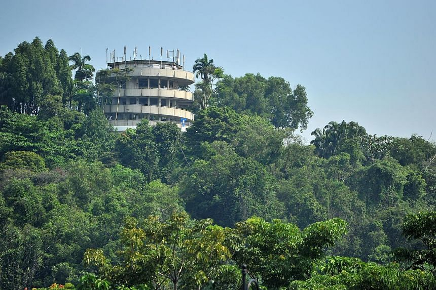 Poised atop Jurong Hill, the lookout tower offers visitors a panoramic view of the surrounding area.