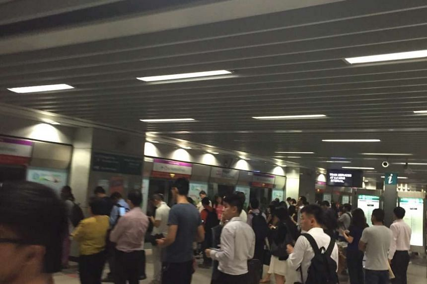 The crowd at the Punggol station platform on the North- East Line (NEL) at 8.03am on Oct 26, 2015.