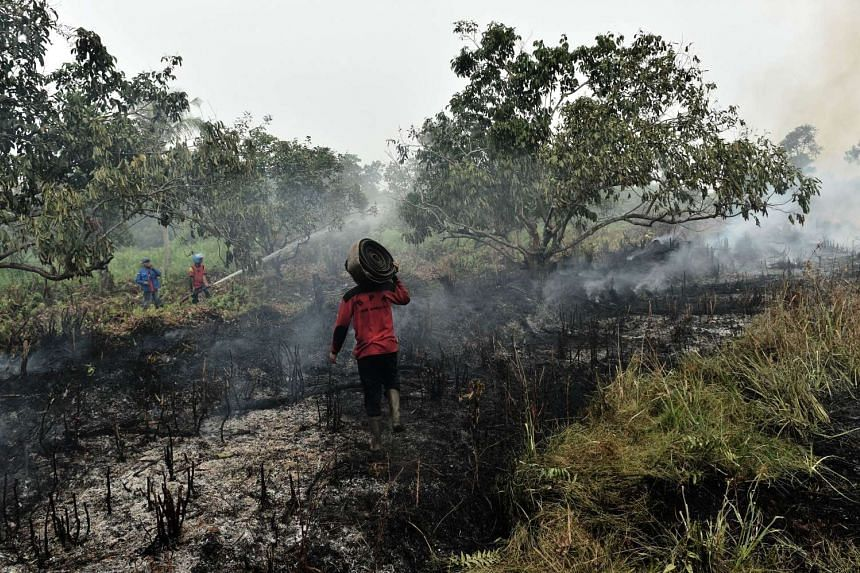 Fire fighters and volunteers extinguish a fire on peat land in Kuala Kapuas, Central Kalimantan, on Oct 25, 2015.
