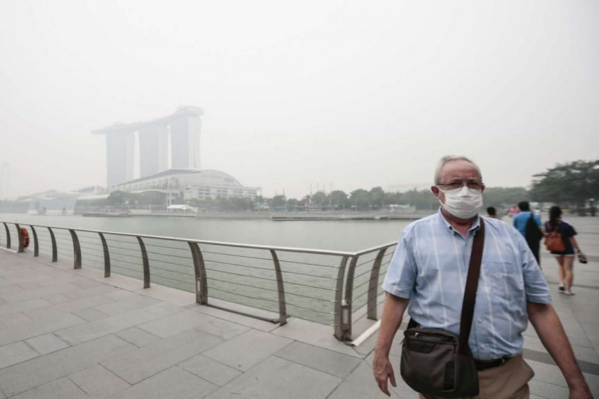 A tourist wears an N95 mask to safeguard against the haze pictured against the backdrop of the haze shrouded Marina Bay Sands resort, in the financial district of Singapore, Oct 23, 2015.