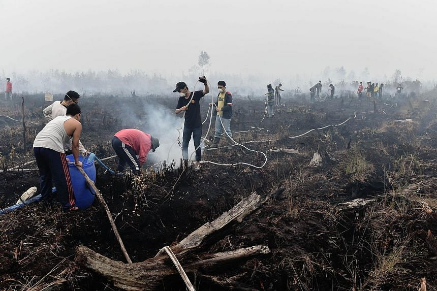 Volunteers extinguishing a peatland fire on Tuesday on the outskirts of Palangkaraya, central Kalimantan, where respiratory illnesses have soared in recent weeks.