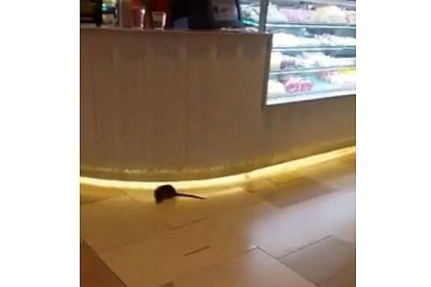 Facebook user William Lim on Oct 18,  claimed to have seen two rats falling from the air-conditioning duct in the ceiling.