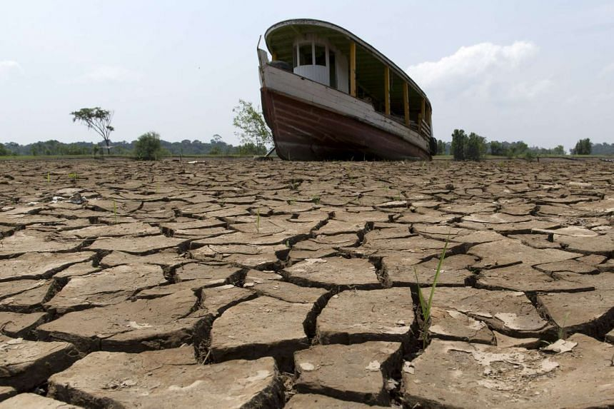 A boat lies on the bottom of Amazonas river, in the city of Manaus, Brazil, on Oct 26, 2015. A severe drought has pushed river levels in Brazil's Amazon region to lows, leaving isolated communities dependent on emergency aid and thousands of boats st