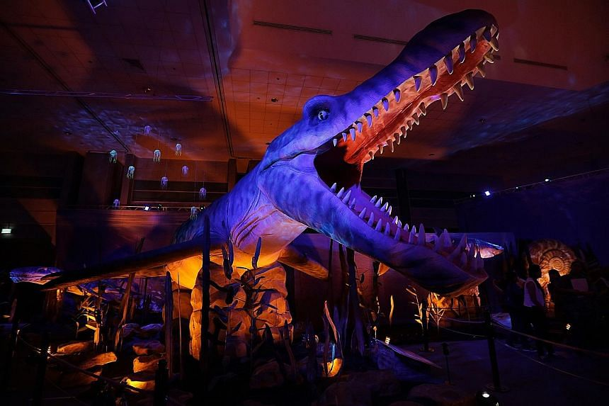 A re-creation of the pliosaurus, a massive marine reptile that existed during the late Jurassic period more than 145 million years ago, is among the displays at the Monsters of the Sea exhibition at the Science Centre. In all, the show will feature a