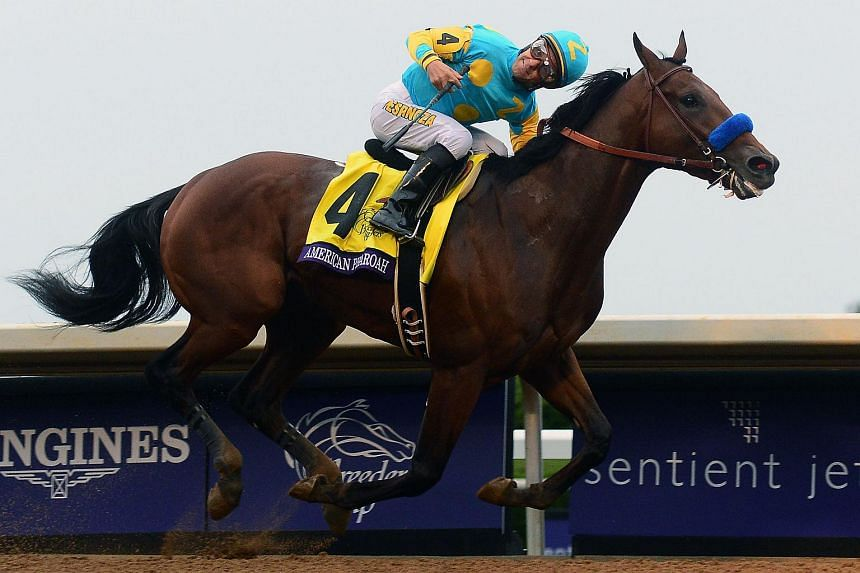 American Pharoah #4, ridden by Victor Espinoza wins the field during the Breeders' Cup Classic during day two of the Breeders' Cup at Keeneland Racecourse on Oct 31, 2015 in Lexington, Kentucky.