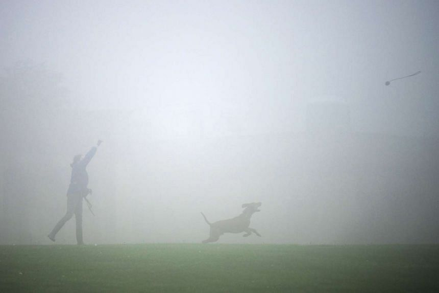 Fog shrouds Crystal Palace as a woman plays with her dog in London yesterday.